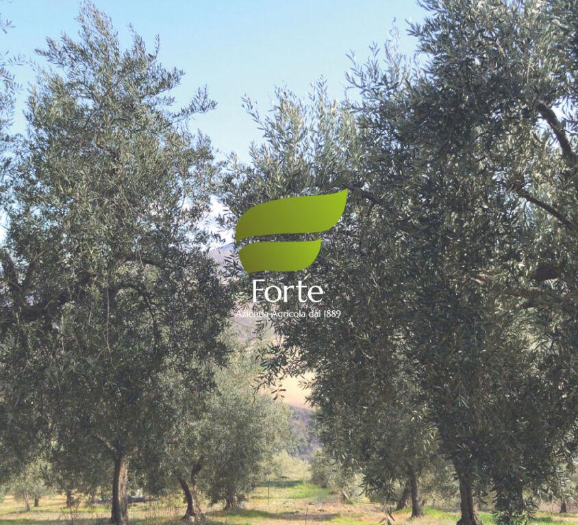 Azienda Forte